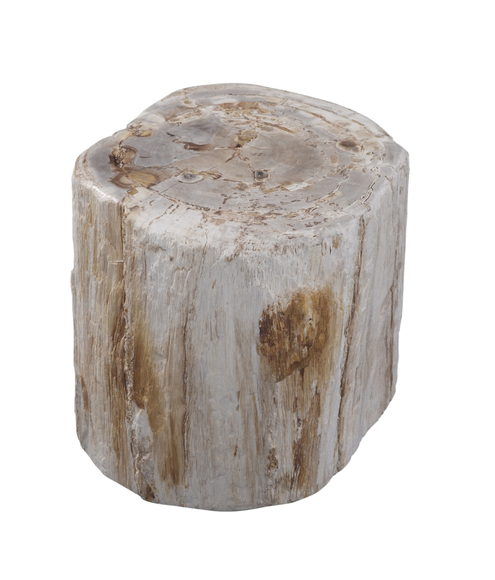 accent tables woodbrook designs petrified wood table light ashley signature coffee outdoor kitchen small narrow nightstand transition pieces for flooring very ikea storage bins