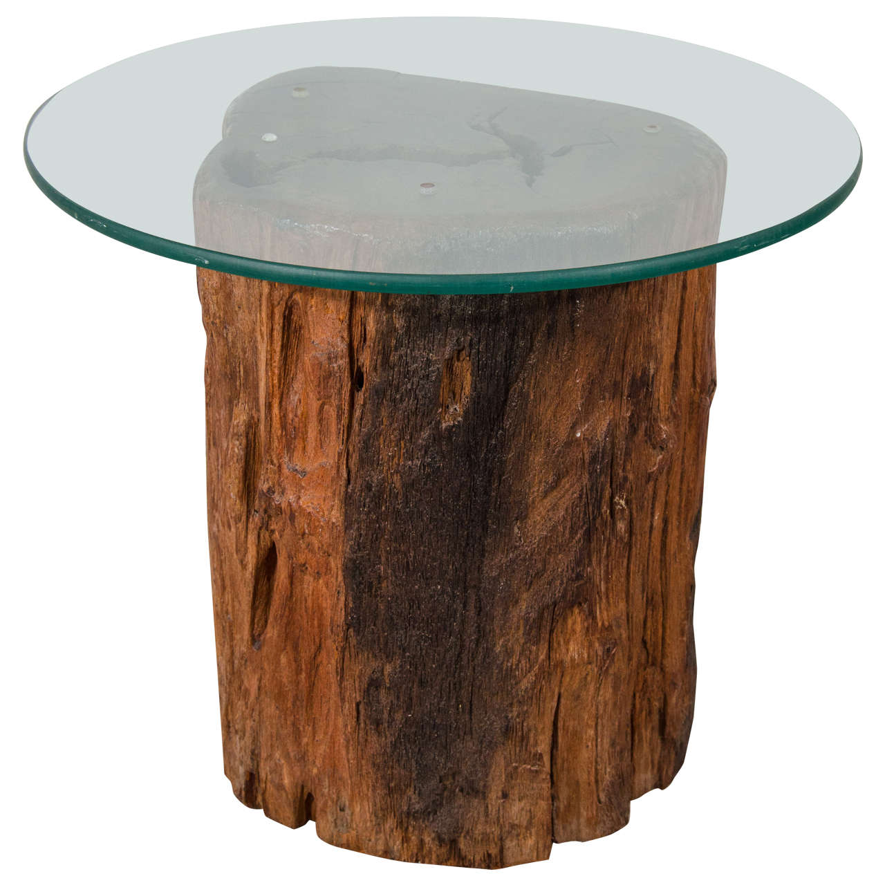 antique petrified tree trunk side table with glass top wood accent trestle vintage inspired couch wine holder bath and beyond instant pot furniture tulsa perspex coffee pub tops