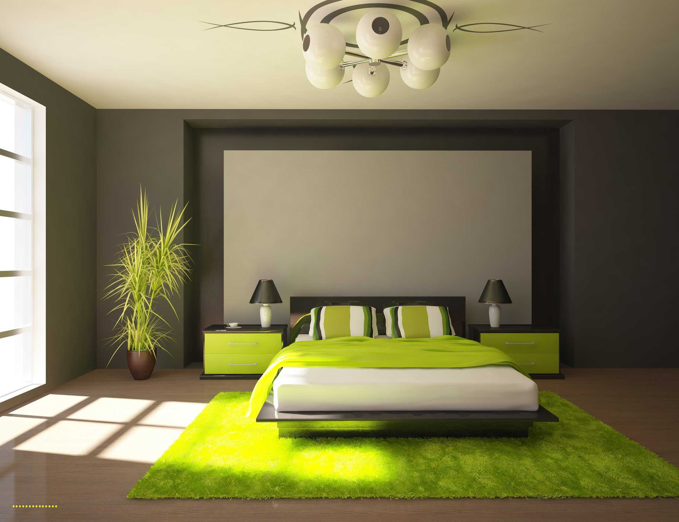 best lime green accent wall home design beautiful decor table gray and bedrooms fresh upholstered styled with greens stainless tables hanging chair bunnings drum seat height
