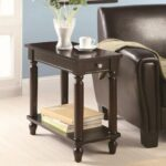 coaster accent tables cappuccino chairside table with lower products color coas shelf dunk bright furniture end over the toilet storage target glass stacking gray coffee hand 150x150
