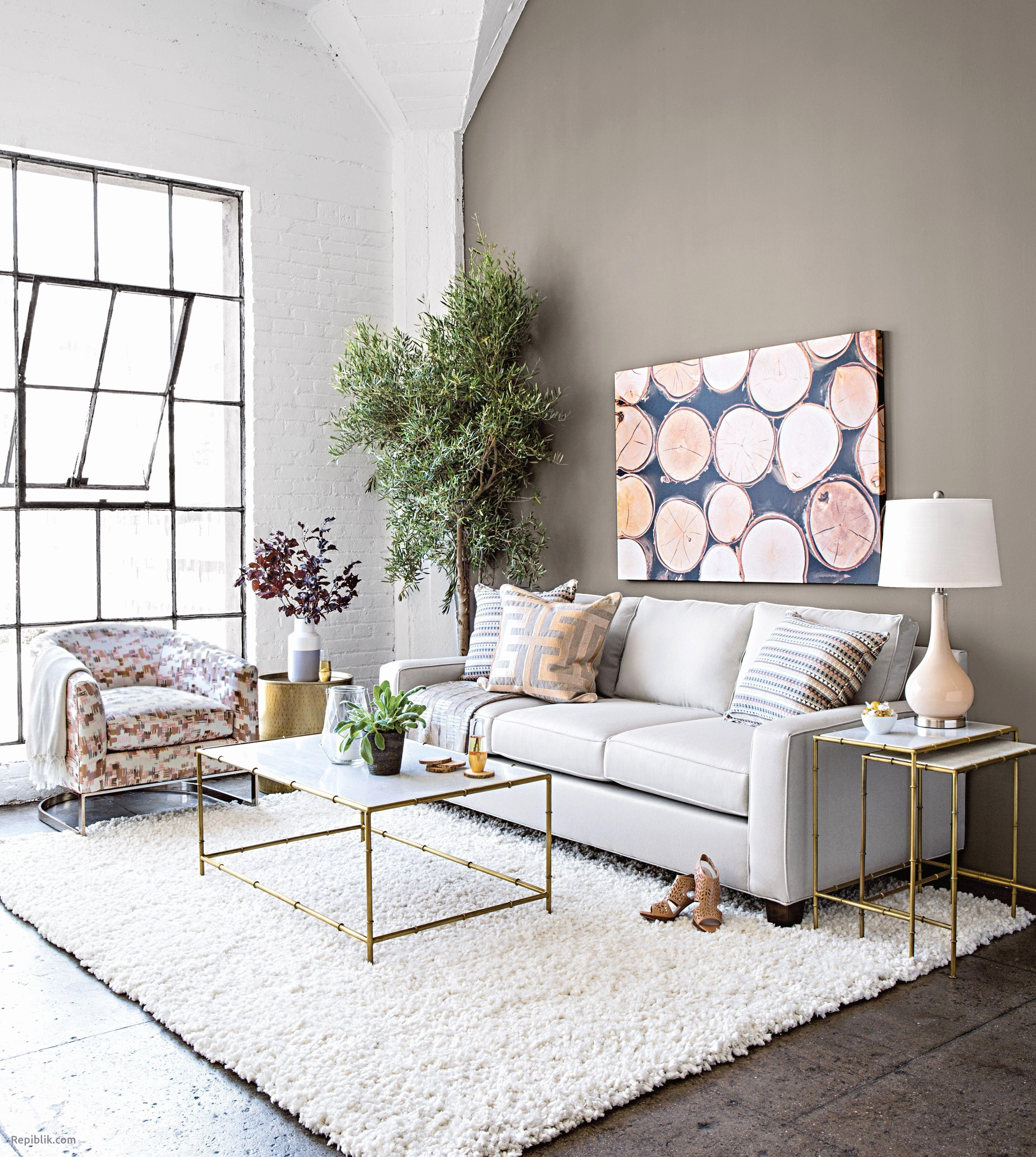 coffee table decorative accents ideas gallery tables decorating for living room elegant collection fresh drum stool live edge wood chair covers outdoor furniture brass and marble