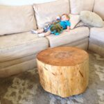 cypress root coffee table tree trunk wood small side accent tables acrylic end outdoor swing chair gold frame reclaimed trestle west elm shades blue lacquer white kitchen and 150x150