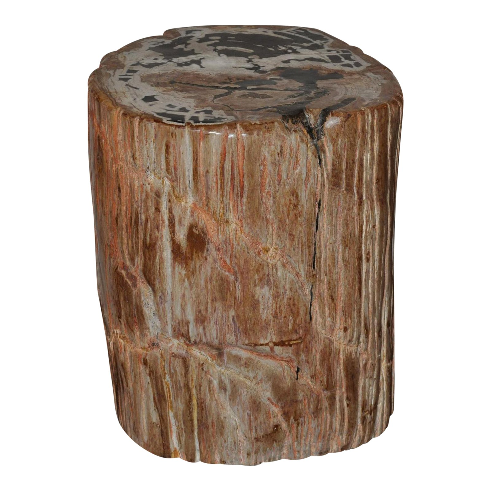 designer quality ancient petrified wood side table chairish accent small round glass dining hampton bay furniture cherry wedge end wrought iron legs walnut bedside white and brown