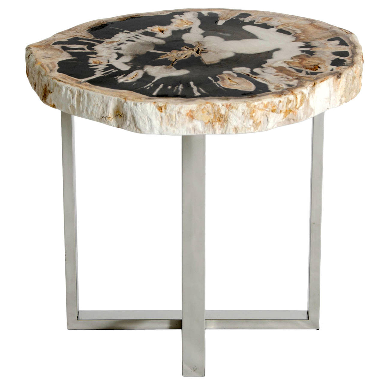 end table with petrified wood top accent for perspex coffee wicker tables drawers west elm box frame white and brown side lighting seattle long skinny console hall chests consoles