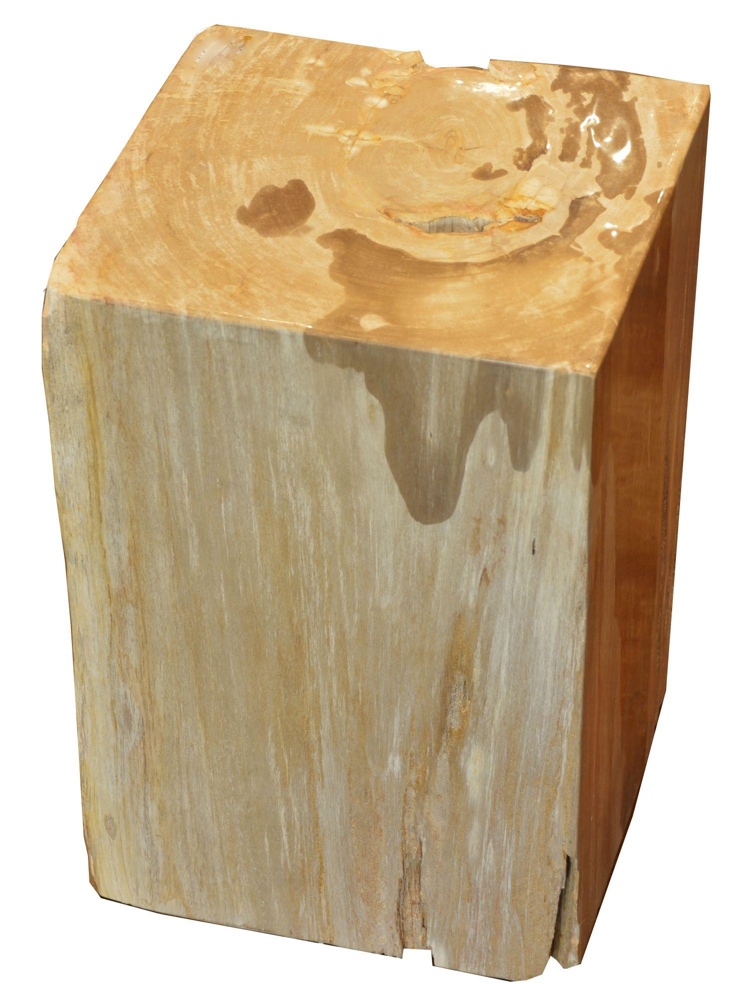 petrified wood cube stool accent table tuscan furniture block pottery barn jamie oak bedside cabinets outdoor folding metal target beach decor lamps sofa and coffee large tables