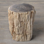 petrified wood stump end table accent mudroom furniture counter height sets wrought iron legs lighting seattle telephone side tulsa white contemporary coffee percussion stool 150x150