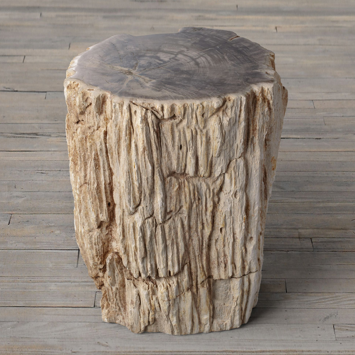 petrified wood stump end table accent mudroom furniture counter height sets wrought iron legs lighting seattle telephone side tulsa white contemporary coffee percussion stool