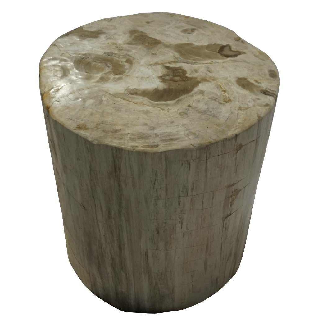 round petrified wood side table accent end stool kitchen dining yellow coffee tray pottery barn black metal lamp lighting seattle narrow console inches deep with gold accents