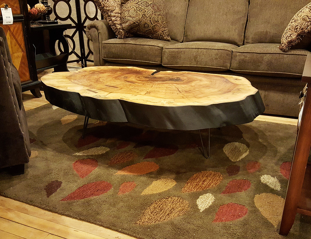 tree trunk coffee table base drift wood stumps acrylic accent glass dining cream kitchen and chairs stone gold frame west elm shades yellow home decor rectangle cloth tablecloths