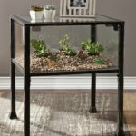 southern enterprises terrarium display end table create custom glass case accent adding your own decorative displays made natural materials chest coffee lift top winchester chair 150x150