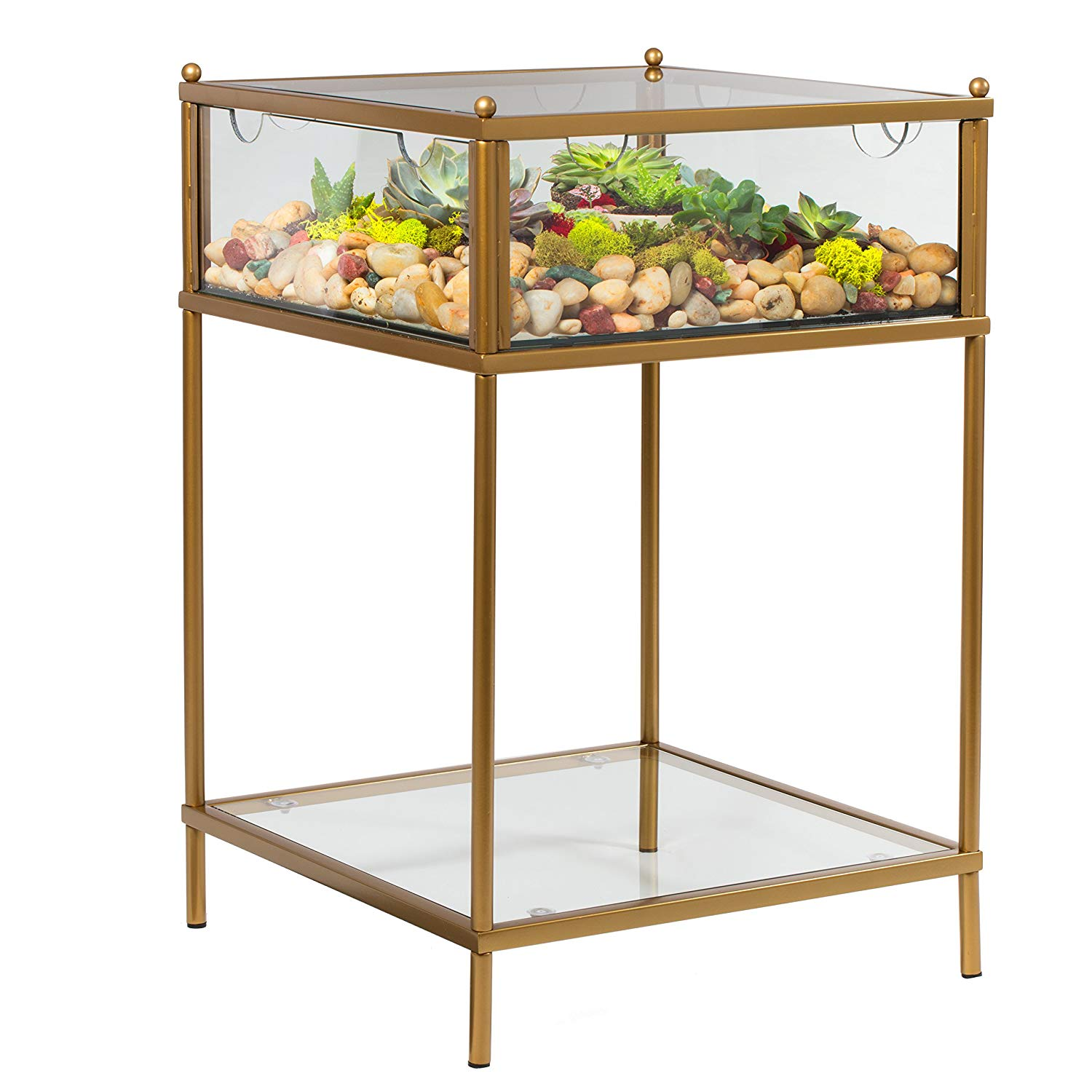 terrarium display end table with reinforced glass case gold iron kitchen dining universal furniture elephant lazboy edmonton natural color coffee lift top winnipeg nightstand