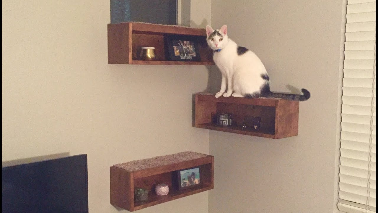 floating cat shelf boxes shelves and ikea cube storage white kitchen decor ideas fireplace mantel mantle cable box mount small rustic barn beam office wall cabinets mounted tree